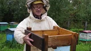 ПЧЕЛОВОДСТВО №22: Осенняя ревизия девочек-пчелок