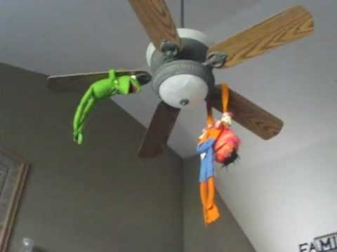 The Muppets Kermit Amp Animal Spinning On A Ceiling Fan
