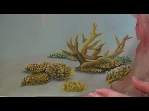 Art Tutorial   Coral Reef Speed Drawing