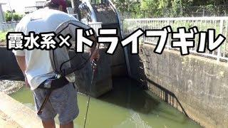 夏の新作!釣れ釣れ!SSドライブギル!