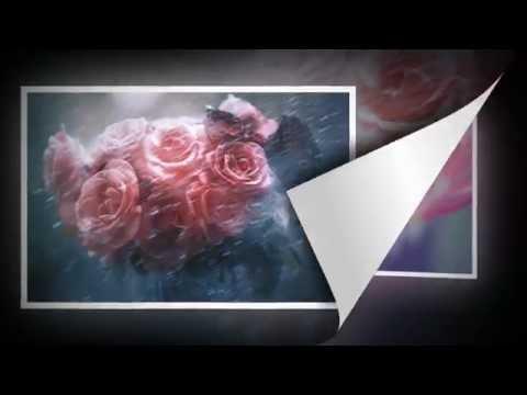 Fine Art Flowers Collection.  Jenny Rainbow Fine Art Photography