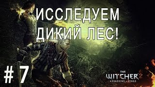 The Witcher 2: Assassins of Kings #7 - Исследуем дикий лес!