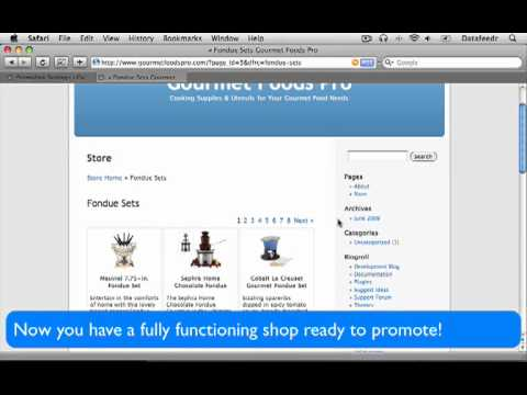 Build Unlimited Affiliate Datafeed Wordpress Stores