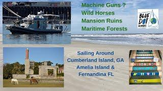 Machine Guns, Mansion Ruins, Wild Horses & Maritime Forests - Sailing PILAR - Cumberland Island
