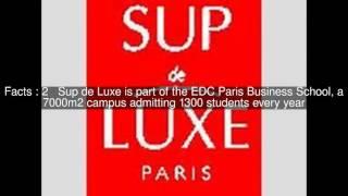Institut Supérieur de Marketing du Luxe (Sup de Luxe) Top  #5 Facts