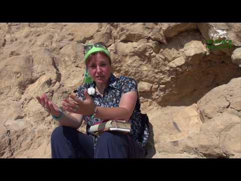 MASADA, visita guidata da Renata Semizzi (prima parte)