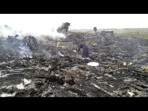 Malaysia Airline crash: 'Sophisticated system' needed to take down plane