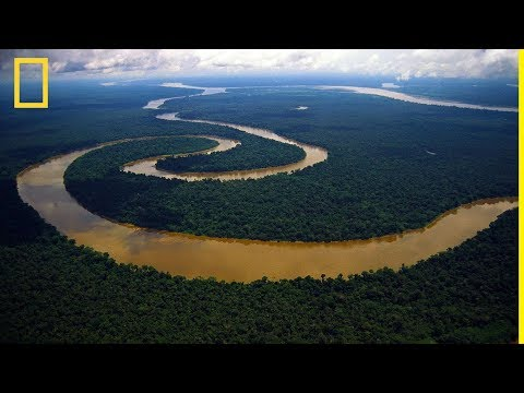 National Geographic | Amazon River | NatGeo Wild