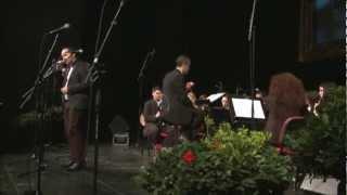 Gradska glazba Zadar i Dario Terzin - Sve moje ljubavi