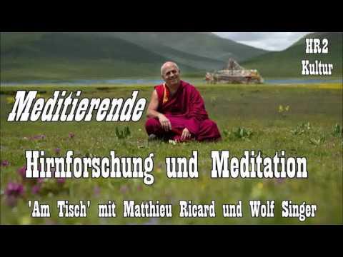 'Meditierende' - Hirnforschung und Meditation ( 'Am Tisch' mit Matthieu Ricard und Wolf Singer )