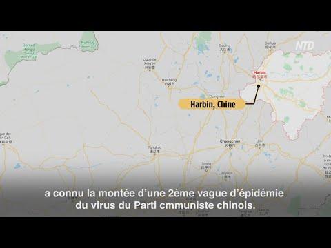 Coronavirus en Chine: une deuxième vague à Harbin ?