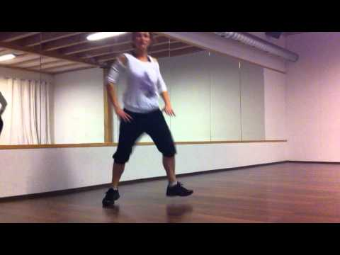 Zumba Basic Steps by Birgit Mayer