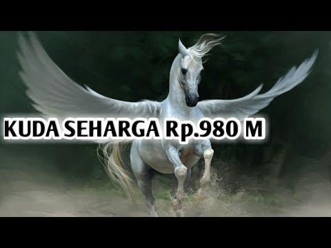 kuda-termahal-di-dunia,-seharga-rp.980-m