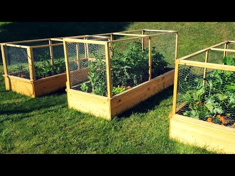 Enclosed Raised Garden Beds – DIY Gardening Project