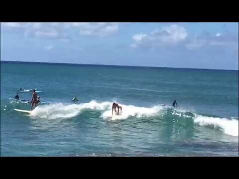 Surfing Turtle Bay On A Fun Board