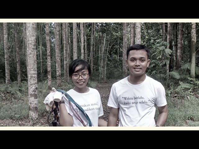 Bangkirai TreeTop