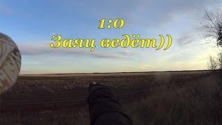 Охота на зайцев - Пока 1:0)) Зайчик ведёт))