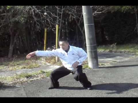 中国拳法(八極拳・劈掛拳・螳螂拳・太極拳 他)