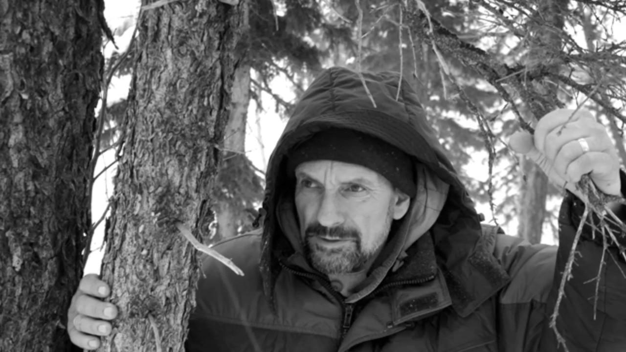 Михаил тарковский замороженное время скачать книгу