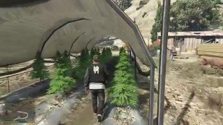 Calling the Cops to a Marijuana Farm in GTA V