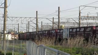 JR貨物・早朝のEF210形牽引貨物列車(Japan Freight Railway)