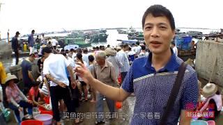 【原创】湛江霞山东堤 渔货交易兴旺 海鲜秋冬仍火爆