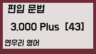 편입 문법 3,000 Plus43