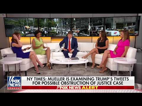 Judge Nap: Mueller Sees Trump's Tweets as 'Treasure Trove, Window Into His Thinking'