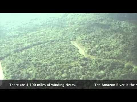 Видео Essay pollution english