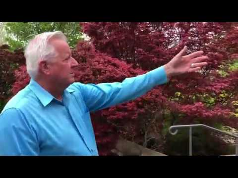 Red Maple Rill Tour