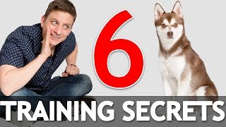 6 Dog Training Secrets in 5 Minutes! *NEW*