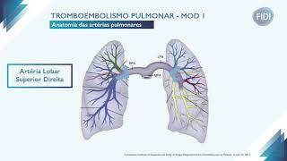 Do tromboembolismo fisiopatologia
