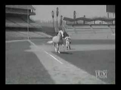 Mister Ed and the Dodgers