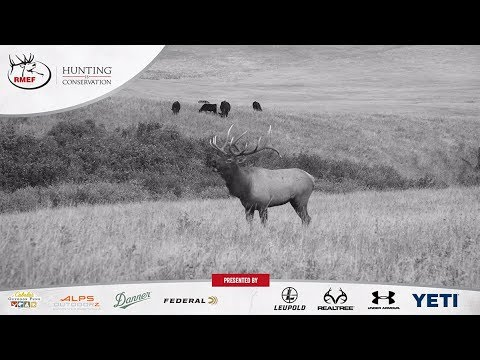 Hunting Is Conservation -