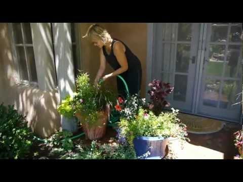 Four Season Garden Design landscaping Santa Fe New Mexico