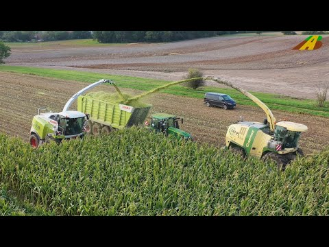 Groeinsatz Maishckseln 2019 - Krone BigX 850, Claas Jaguar 970 farmer corn harvest Maisernte