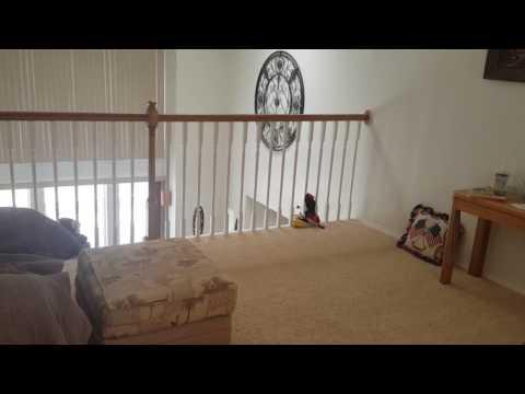 22145 Victory Lane, Lovelock, NV custom home for sale