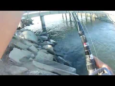 Fishing Bass ave Mendota [Fresno]
