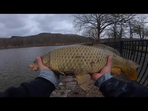 Hubbard Park Fishing