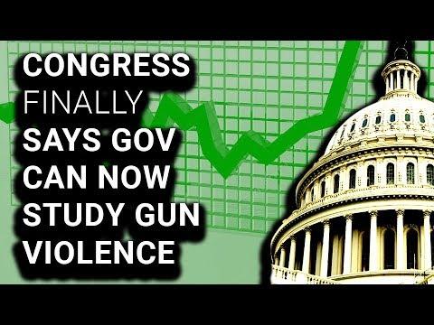 After 2 Decade Ban, Congress Finally Says Govt Can Study Gun Violence