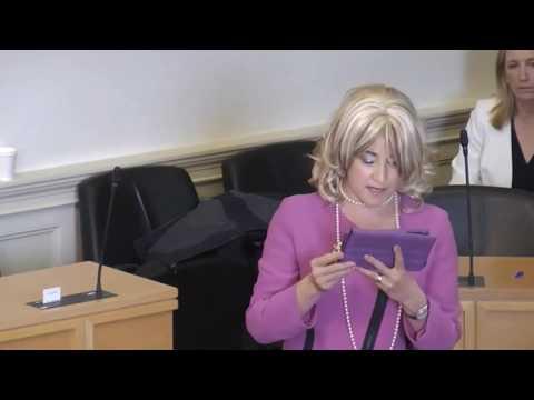 Bunty Twuntington McFuff's 's Pitch to be president of Ireland