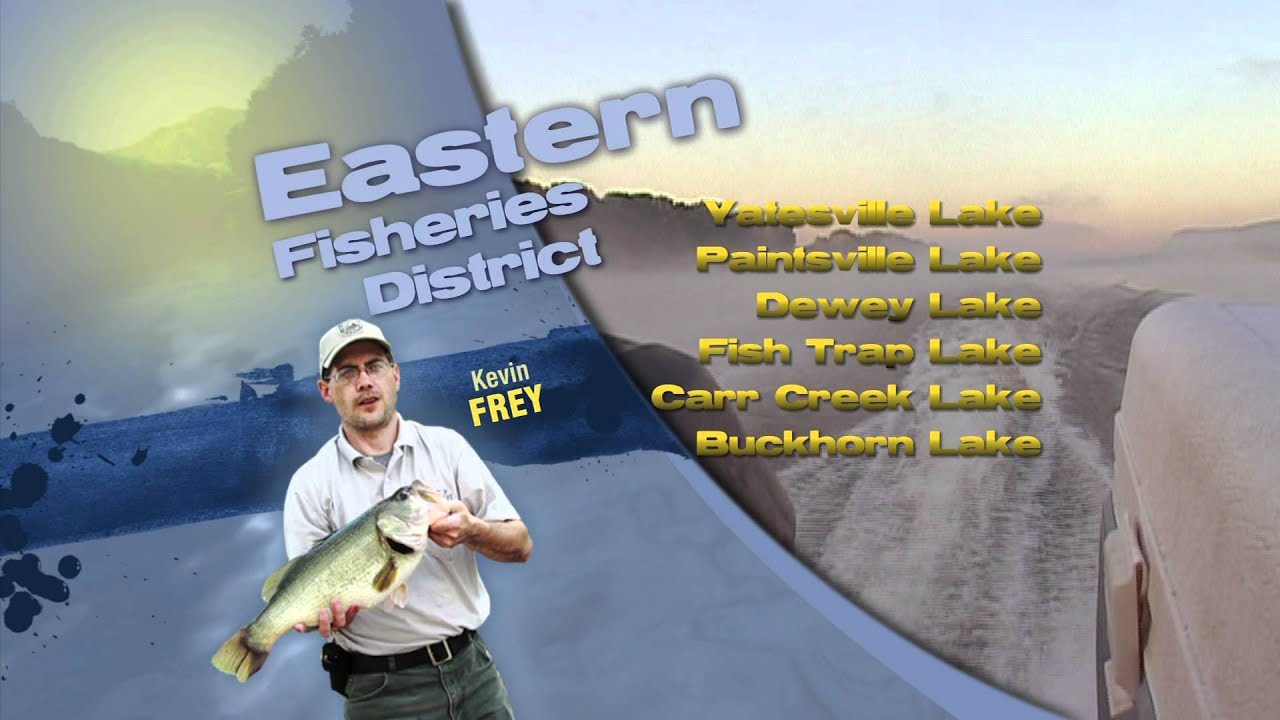 Kentucky fishing report for early october youtube for Ky fishing report