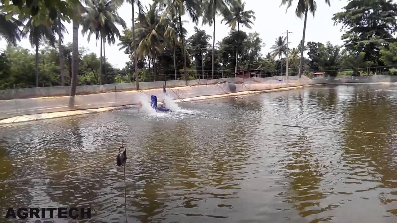Aquaculture Pond Construction