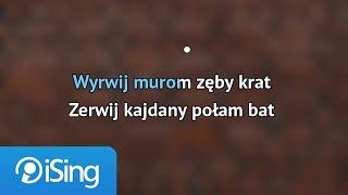 Jacek Kaczmarski - Mury (karaoke iSing)