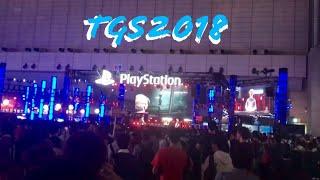 Fui na Tokyo Game Show 2018. TGS2018