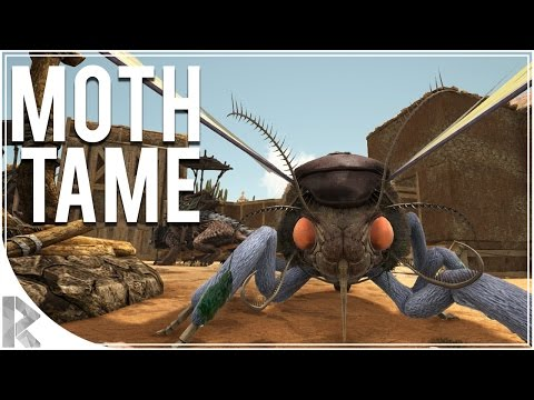 MothLymantria & TREX Tame!  Ark Survival Evolved Scorched Earth DLC  Part 8 Ark Scorched Earth
