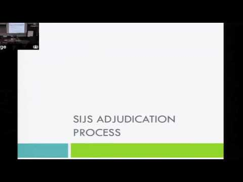 Immigration Representation for SIJS (3/5)