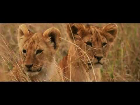 Africa Exclusive - Safari.co.uk