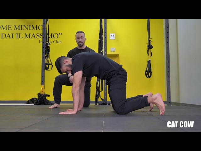 Catcow. Esecuzione e tecnica