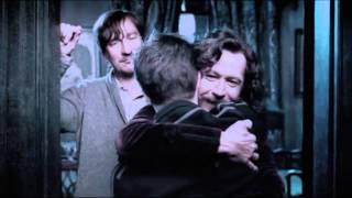 No Need to Say Goodbye // Harry Potter